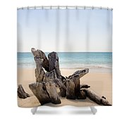 Beach Trunk Shower Curtain