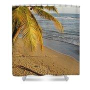 Beach Under Golden Palm Shower Curtain