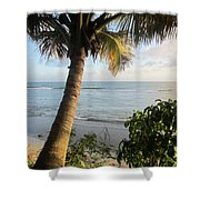 Beach Under The Palm 4 Shower Curtain