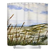 Beach Watercolor 3-19-12 Julianne Felton Shower Curtain