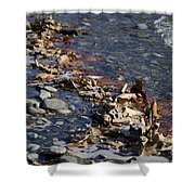 Beach With Stones Shower Curtain
