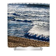 Beaches And Birds Shower Curtain