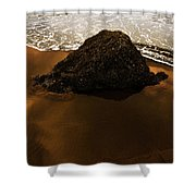 Beaches Of Gold Shower Curtain