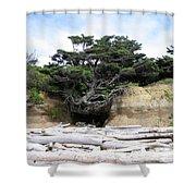 Beachtree Shower Curtain