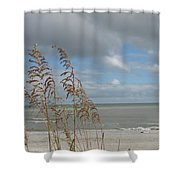 Beachview With Seaoat  Shower Curtain