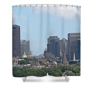 Beacon Hill Shower Curtain