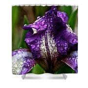 Beaded Iris Shower Curtain