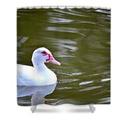 Beak And Feather Reflections Of The Muscovy  Shower Curtain