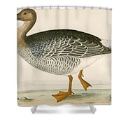 Bean Goose Shower Curtain