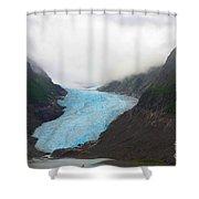 Bear Glacier Shower Curtain