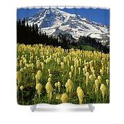 Bear Grass At Mt. Rainier - V Shower Curtain