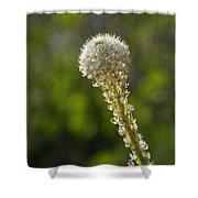 Bear Grass Glow Shower Curtain