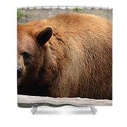 Bear In The Bath Shower Curtain