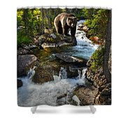 Bear Necessity Shower Curtain