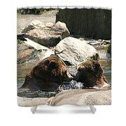 Bear Smooches Shower Curtain