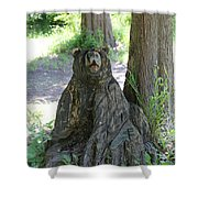 Bear In A Tree Shower Curtain