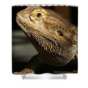 Bearded Dragon Profile Shower Curtain
