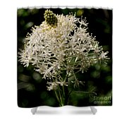 Beargrass Bloom Shower Curtain
