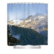 Bears With A View Shower Curtain