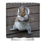 Beast Mode Squirrel Shower Curtain