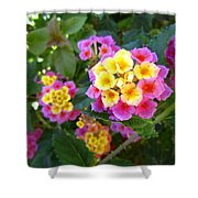 Beaucoup Of Blooms Shower Curtain