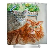 Beauregard And Stonewall Shower Curtain