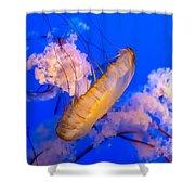 Beautiful And Dangerous Shower Curtain