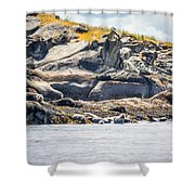 Seals And Rock Scupltures Shower Curtain