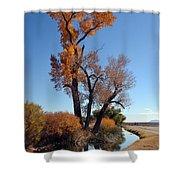 Beautiful Bishop Canal Shower Curtain