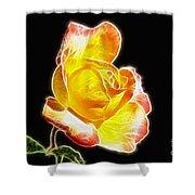Beautiful Blooming Yellow Rose Shower Curtain