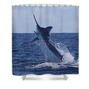 Beautiful Blue Shower Curtain