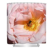 Beautiful By Nature Shower Curtain