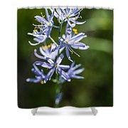 Beautiful Camas Lily In Idaho Shower Curtain