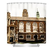 Beautiful Chicago Structures 3 Shower Curtain