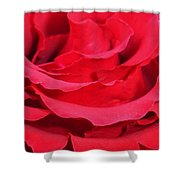 Beautiful Close Up Of Red Rose Petals  Shower Curtain