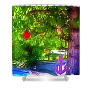 Beautiful Colored Glass Ball Hanging On Tree 1 Shower Curtain