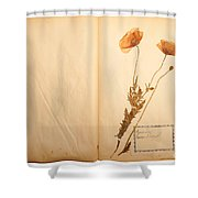 Beautiful Dried Vintage Flowers Shower Curtain