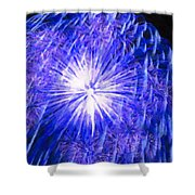 Beautiful Fireworks 11 Shower Curtain