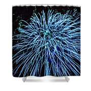 Beautiful Fireworks 13 Shower Curtain