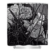 Beautiful Floral Blossoms Shower Curtain by Doc Braham