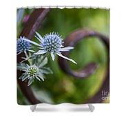 Beautiful Flower Buds Shower Curtain