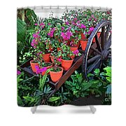 Beautiful Flower Wagon Shower Curtain