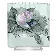 Beautiful Flowers For Mother's Day Shower Curtain