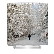 Beautiful Forest In Winter With Snow Covered Trees Shower Curtain