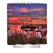 Beautiful Harbor Shower Curtain