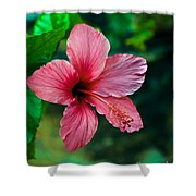 Beautiful Hibiscus Shower Curtain