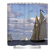 Beautiful History Shower Curtain