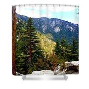 Beautiful Idyllwild Shower Curtain