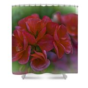 Beautiful Little Red Flowers Shower Curtain