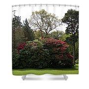 Beautiful Muckross Gardens In Spring Shower Curtain